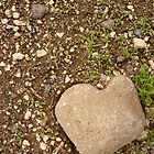 Stone Heart by freger