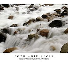 Popo Agie River - Sinks Canyon State Park, Wyoming by Samuel Sweet