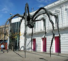 Giant Spider by Maggie Hegarty
