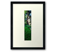 Slice of Life (vertical panorama) Framed Print