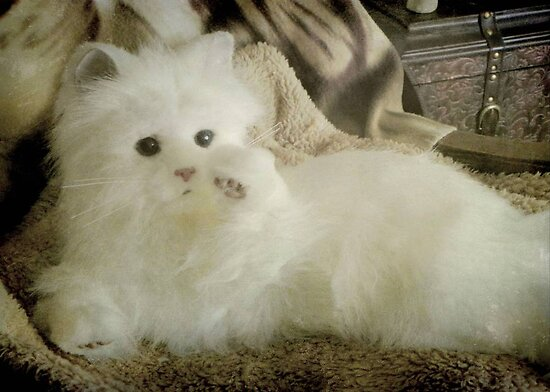 Snow Puff...I'm so beautiful... © by Dawn M. Becker