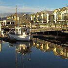 Launceston Marina by Paul Campbell  Photography