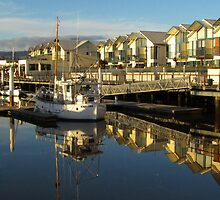 Launceston Marina by Paul Campbell  Photography