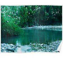 Tiny Lake Poster