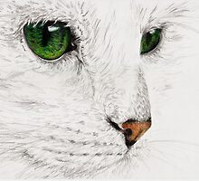 Green Eyes - Cat by SarahLittleArt