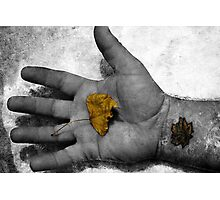 Forever Autumn Photographic Print