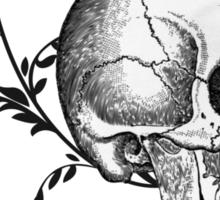 Skull & Swirls Sticker