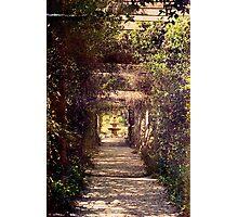 Moss draped wedding trellis with fountain. Photographic Print