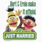 Bert & Ernie - Just Married by DocMiguel