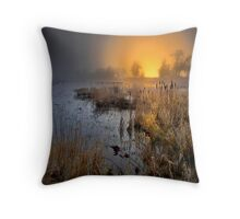 Fog Over The Duck Pond Throw Pillow