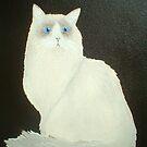 Ragdoll Cat by Joann Barrack