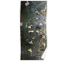 Textures - Tree bark, Mt Mee Poster