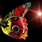 Butterfly Yellow by uepa arts