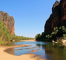 view of the lennard river and devonian reef, windjana gorge by nicole makarenco