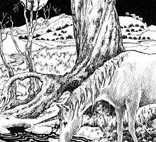 Unicorn by Barnaby Edwards