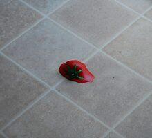 Tomatoe Puree' by zpawpaw