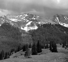 Colorado Pass by Lucinda Walter