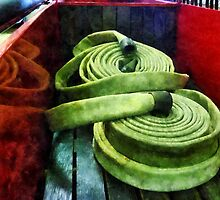 Coiled Fire Hoses by Susan Savad