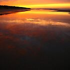bunurong sunrise. coastal victoria, australia by tim buckley | bodhiimages photography