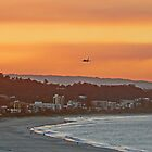 Golden Gold Coast Arrival by Graeme  Hyde