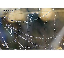 Dripping Jewels Photographic Print