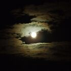 Full Moon At Night by dawnandchris