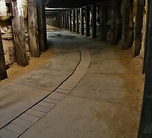 Dog Leg Tunnel, Cockatoo Island. by lib225