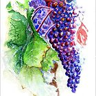 La Vigne by reddogcards