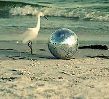 The Disco Ball Egret of South Lido Beach  by Brian David  Braun
