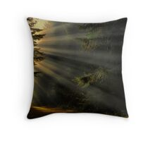 Road To His Glory Throw Pillow