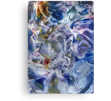 Morphic fields of the mysterious mind Canvas Print