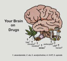 Your Brain on Drugs by bumpybrains