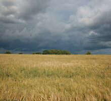 Storm Clouds Over Strawberry Hill by Beargrizzly