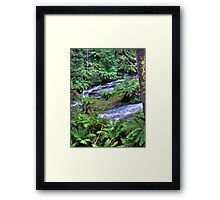 otways 3 Framed Print