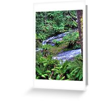 otways 3 Greeting Card