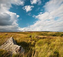 Above Blaenavon by Steve  Liptrot