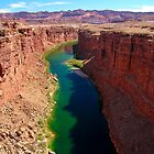 Marble Canyon by Lucinda Walter