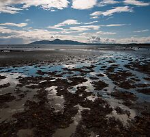 Minerstown Beach by Alan McMorris