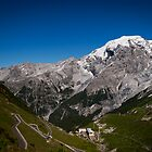 Davos to Stelvio Pass  by Jake Lamont