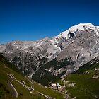 Davos to Stelvio Pass  by Jake Lamont