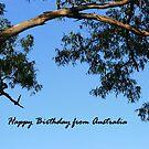 Happy Birthday from AUSTRALIA - card by aussiebushstick