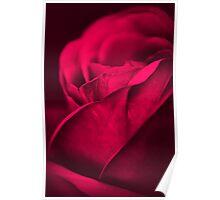 Wake (Rose) Poster