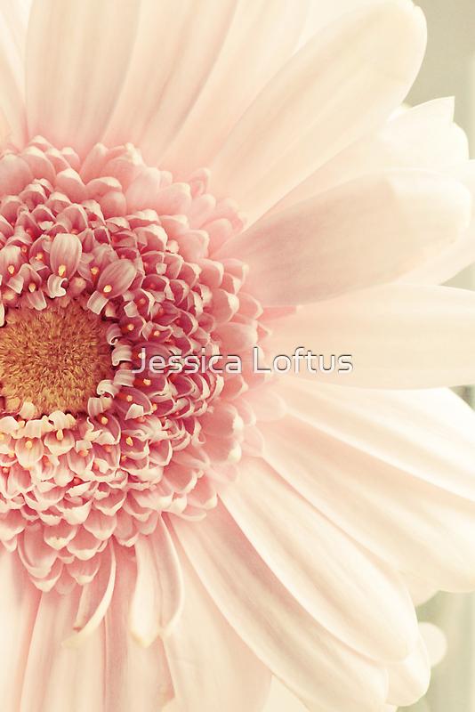 Pink by Jessica Loftus