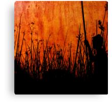 Shadowlands Canvas Print
