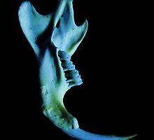 ghost in the bone by marysia wojtaszek