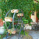The Old Summer Shed © by jansnow