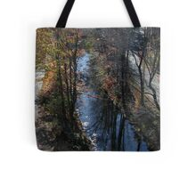 Blackstone Canal in Autumn Tote Bag