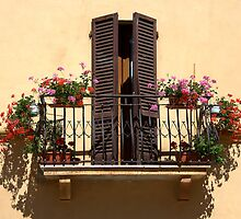 Sun-drenched Balcony by CreativeUrge