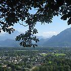Austrian Alps  by Sunny Shaffner