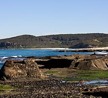 View To Leggy Point by reflector